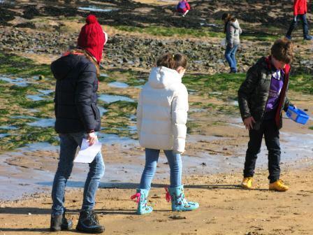Exploring the beach 4