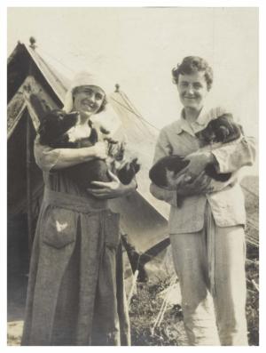 Murphy, Fawcett & camp followers