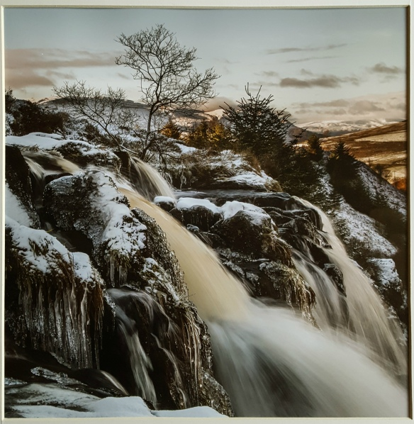 Loup of Fintry by Doug Berndt ARPS